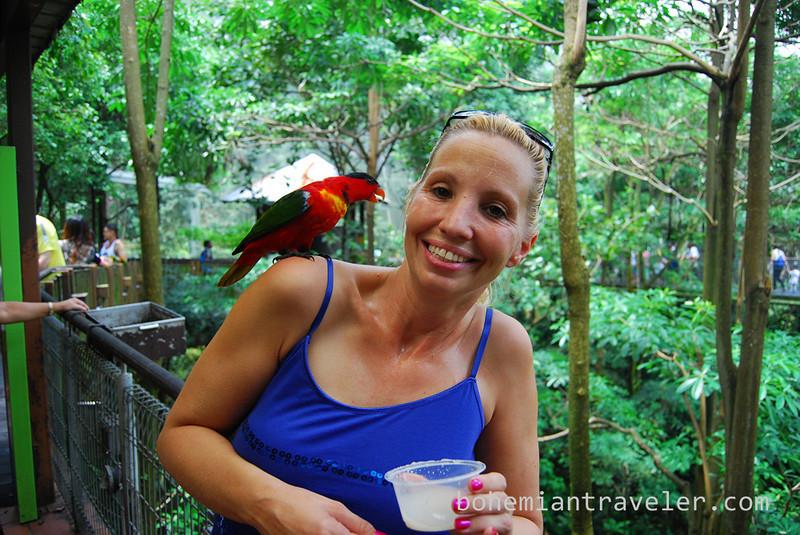 Jen with bird (4).jpg