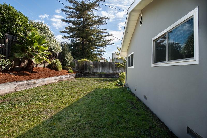 Backyard (3 of 3).jpg