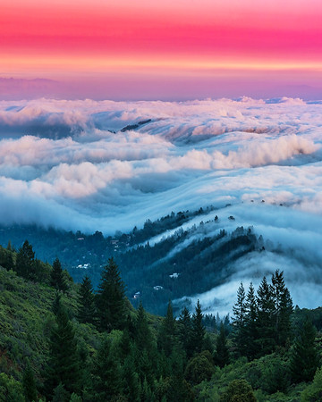Fog Waves (vertical)