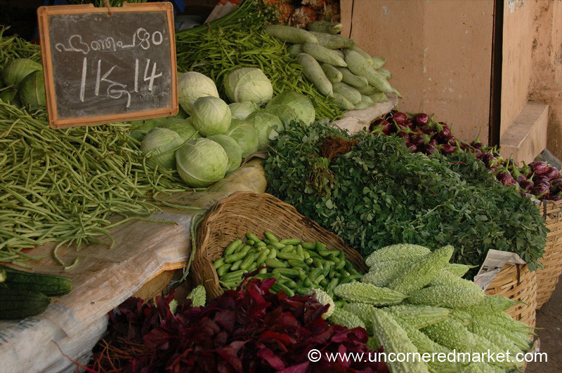 Freshness on Sale - Kochi, India