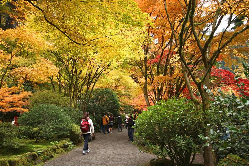 Portland Japanese Garden  11-11-11  3578.jpg
