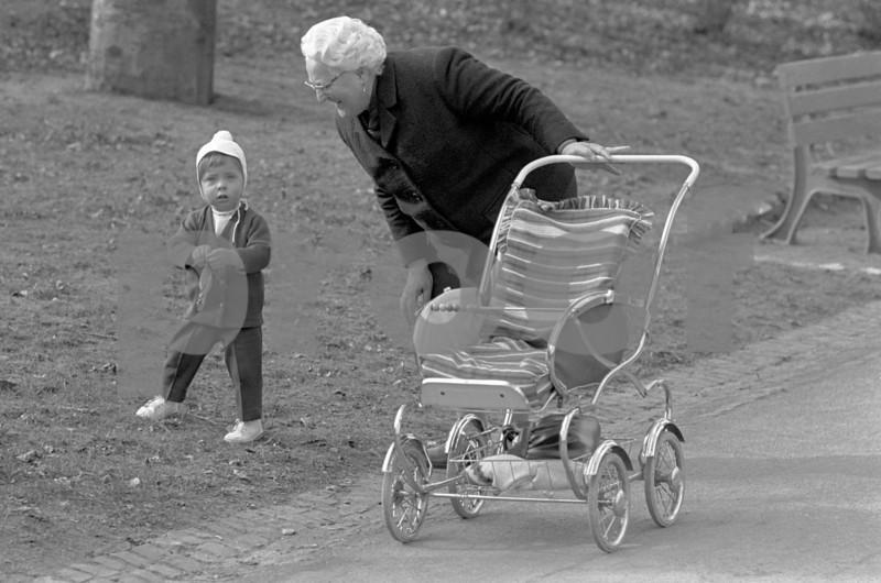 Oma baby stroller 704021.jpg