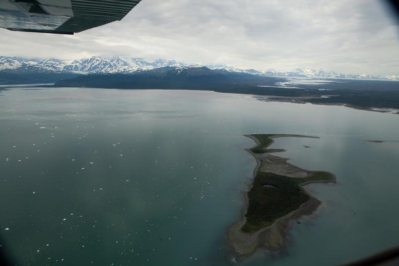 Alaska Icy Bay-4465.jpg