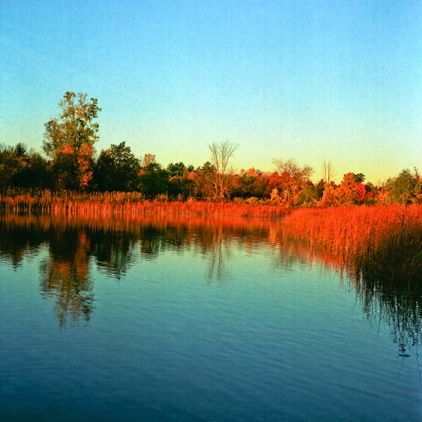 Autumn Hike 120 Film-00002.jpg
