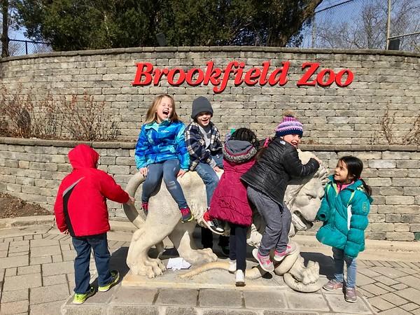 Chloe Brookfield Zoo