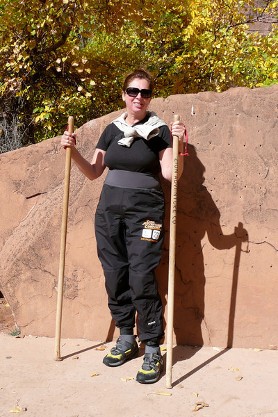 Mission Impossible Agent. Zion NP