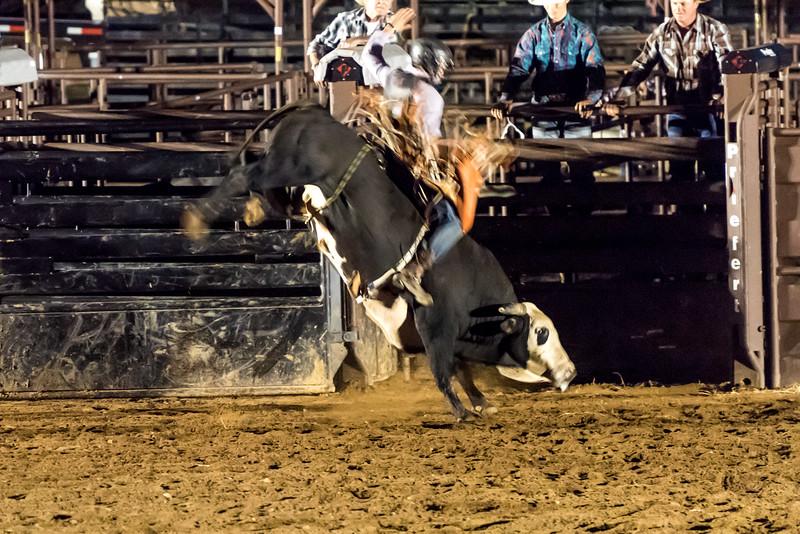 big-cedar-rodeo-254.jpg