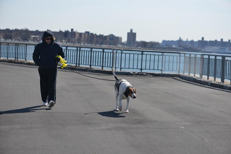 20140316_NYC_0001.jpg