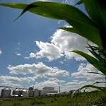 epa-has-no-idea-whether-biofuels-help-the-environment