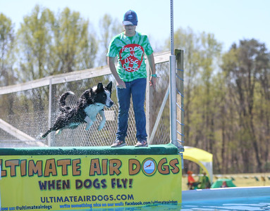 Ultimate Air Dogs _4/16/16