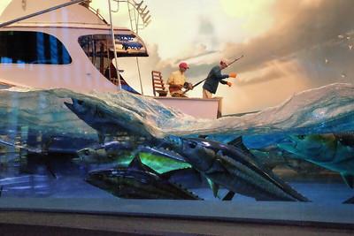 A Trip to the Aquarium - Feb 13 2020