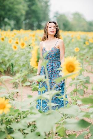 20200730_DungGroup_Sunflowers