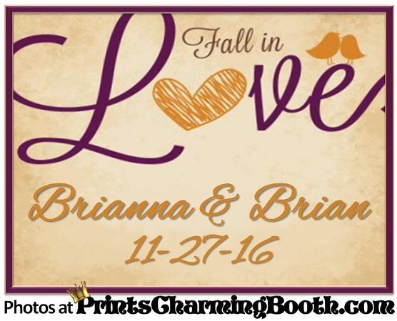 11-27-16 Brianna & Brian Wedding logo.jpg