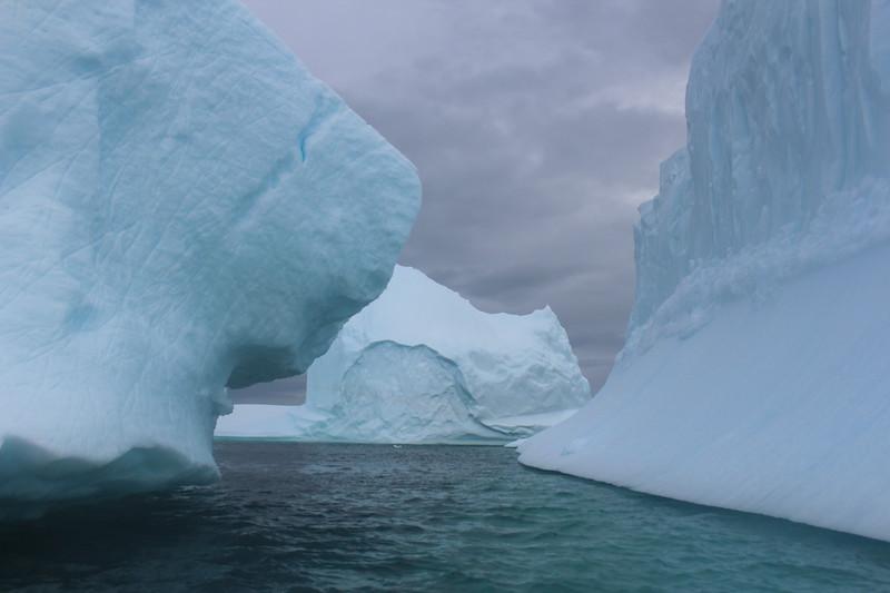 Antarctica 257.JPG