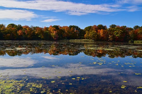 Rouge Urban National Park (October 2019)