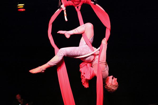 Fringe 2011: Circus Mojo