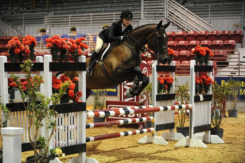 Horse show (89).jpg