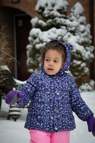 Penelope in the Snow (February 2019)