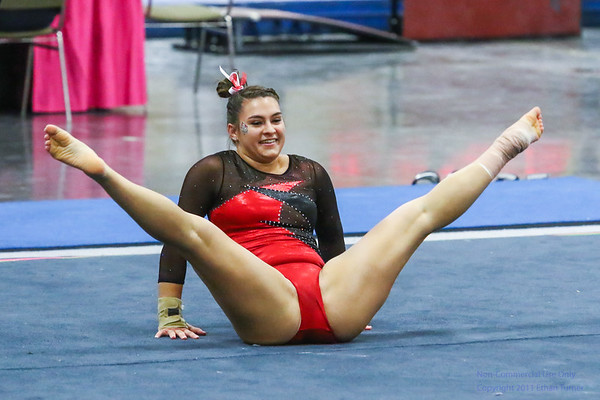 Illinois State University Gymnastics