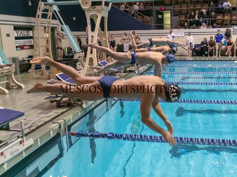 Swimming-diving vs Seton Hall_1050.jpg