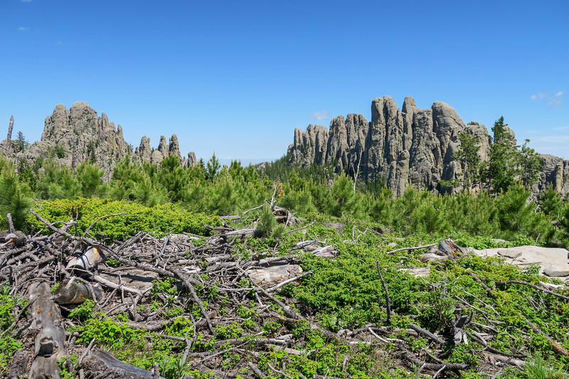 Little Devils Tower/#4B Trail -- 6,750'
