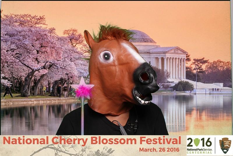 Boothie-NPS-CherryBlossom- (483).jpg