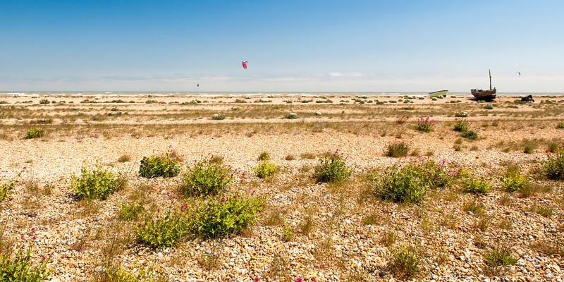 #RomneyMarsh beach