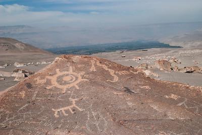Toro Muerto