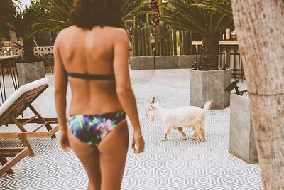 RAYswimwear+ACRE2018