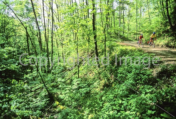 Great Smoky Mountains -- Biking -- Heintooga (in progress)