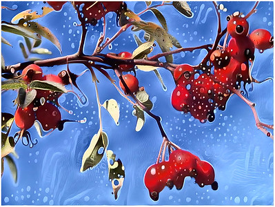 Nature - Berries and pods Fantasy