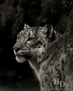 2010-02 Zoo