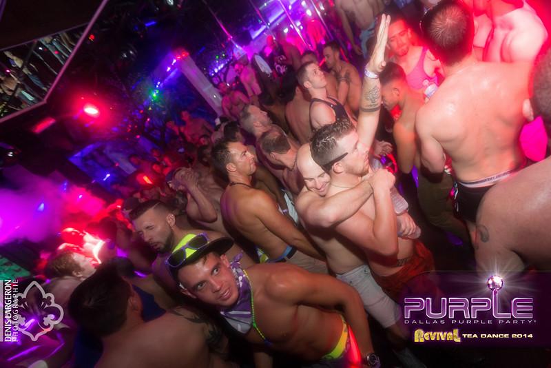 2014-05-11_purple04_1086-3257833447-O.jpg