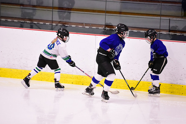 7. Nordiques- Plymouth 10U