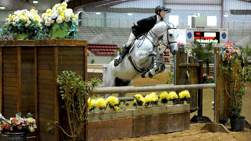 Horse show (17).jpg