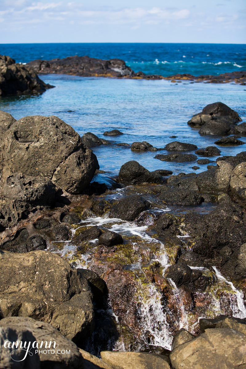 hawaii_amyannphoto_20