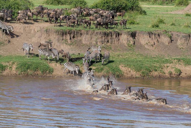 Africa - 101116 - 1285.jpg