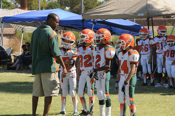 Canes - Fall 2010