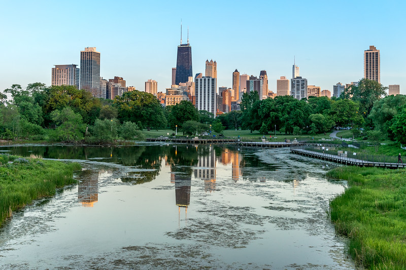 Lincoln Park Zoo Skyline