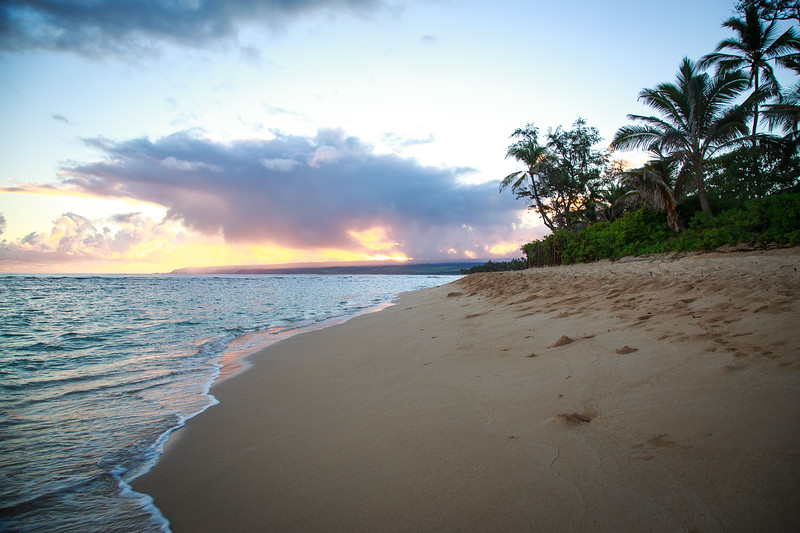 Hawaii-North Shore 2017-9483.jpg