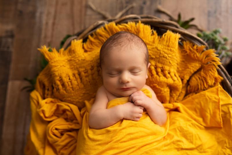 Aquila Gilbert Newborn Session-60.jpg