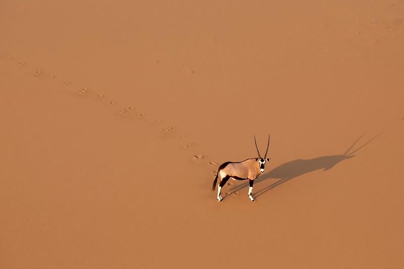 Namibia 69A4589.jpg