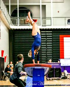 2019 02152018 Gymnastics Section Tournament_01 Rosemount