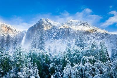 Yosemite Winter Wonderland