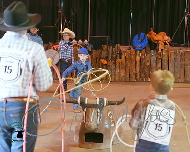 Agribition Dummy Roping - 2015