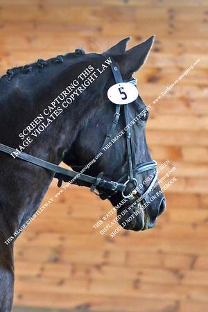 5 Dania & Impera Vom Castell 06-17-2012