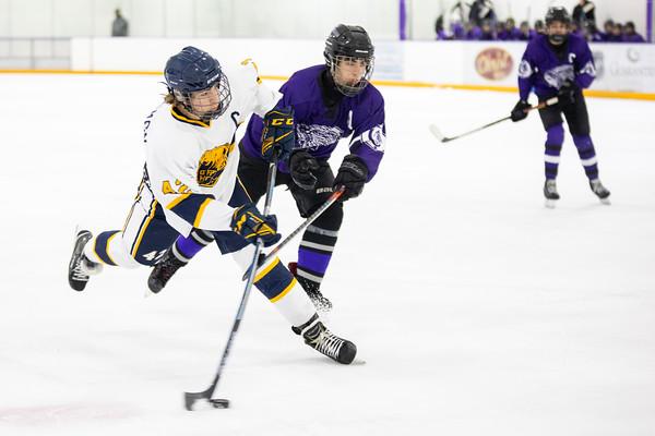 Ice Hockey: Cahokia vs O'Fallon
