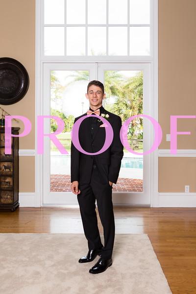 Prom 2019-36.jpg