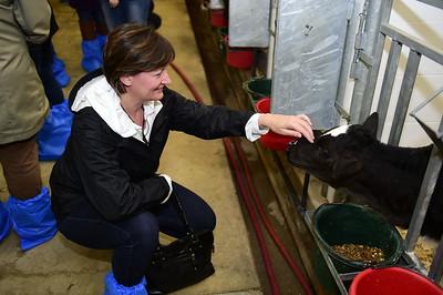 Elkrest Dairy Farm