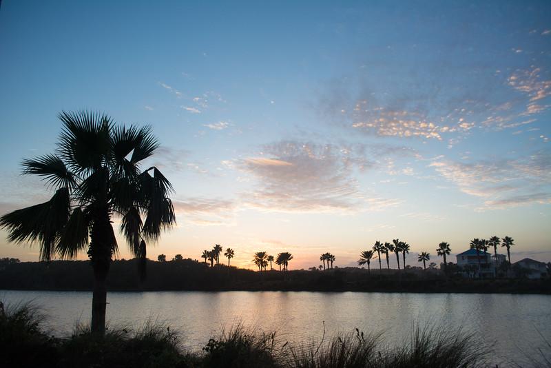 2016-12-21_FloridaTrip-0068.jpg